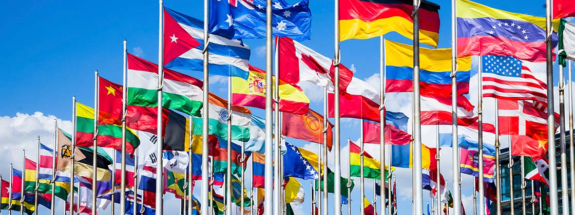International partner network - Different national flags